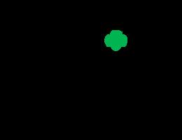 NSM-community-impact-girl-scouts-logo-260x200@2x